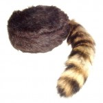 tailcap