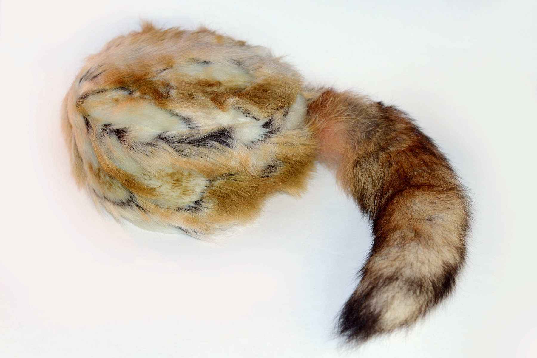 S FoxHat7